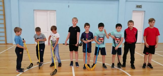 Школьные соревнования по файерболу